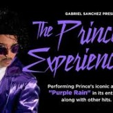 """The Prince Experience"" returns to JD Legends for Saturday evening performance"